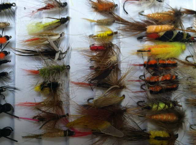 Flies 1